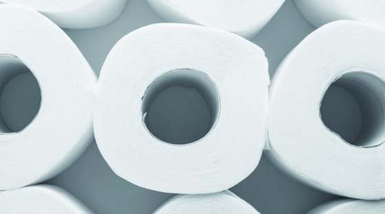 Photo: rolls of toilet paper