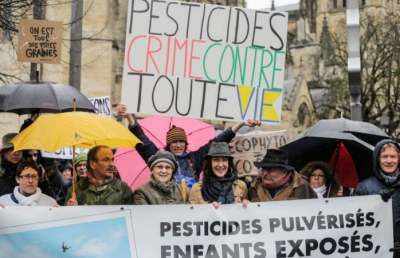 Image: Pesticide protest France wine