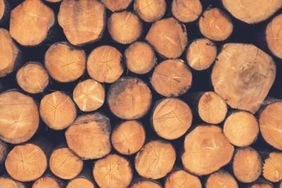 image: timber logs piled up