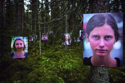 Image: greenpeace campaign to protect the great northern forests