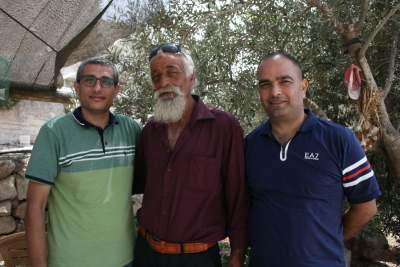 image: olive tree palestine christmas interview