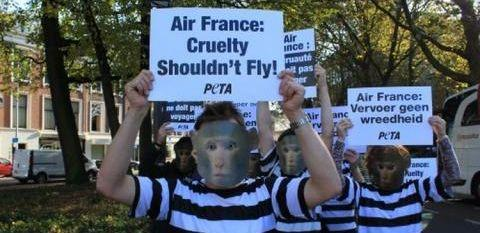 Image: Air France boycott PETA demonstration