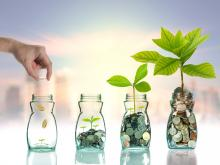 fossil free investment funds