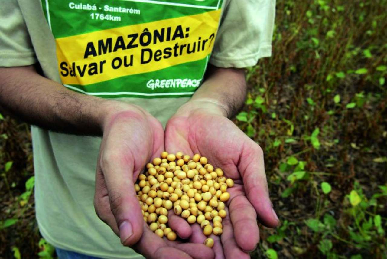 Is Soya Sustainable? | Ethical Consumer