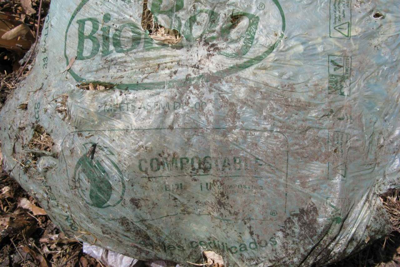 Image: bio-bag-green-compostable-bag-in-compost