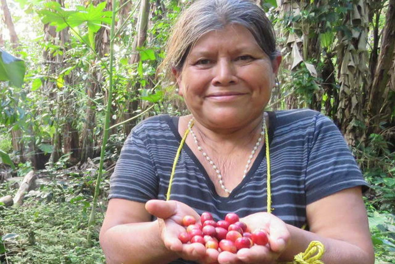 image: fairtrade latin america