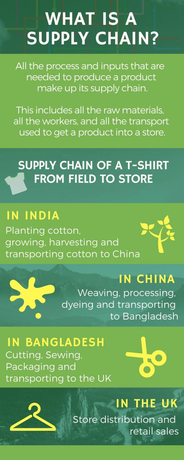 Infographic: supply chain