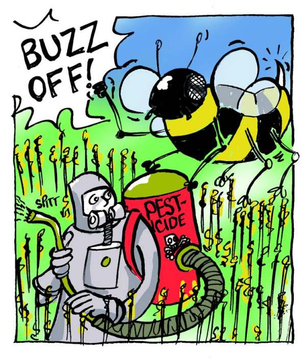 Image: bee chasing pesticide spray he says buzz off!